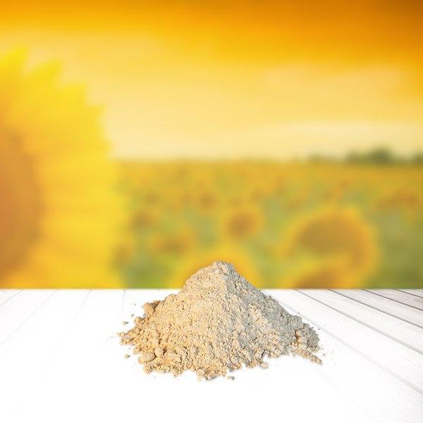 Sonnenblumen-Lecithin statt Soja